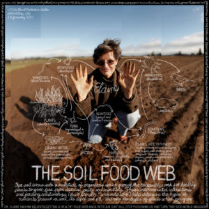 Soil_Food_Web