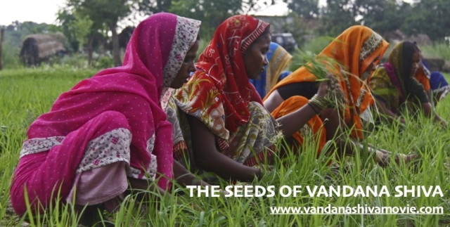 Campaign to raise production funds for 'The Seeds of Vandana Shiva' Film