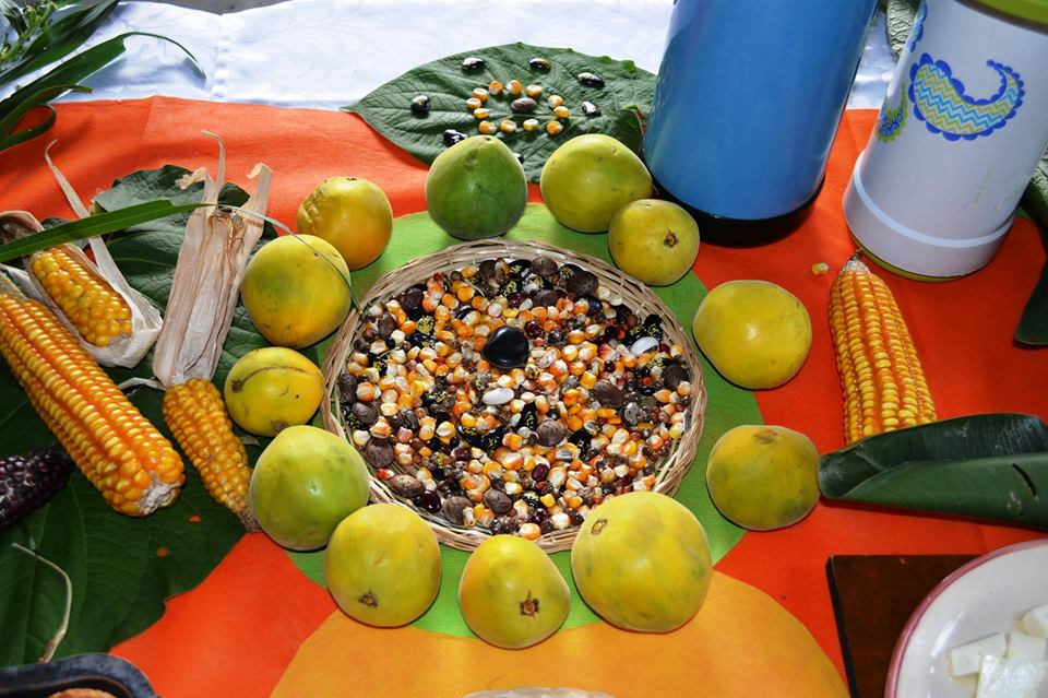 Mercado Agroecológico UTP Alimentos para la Vida
