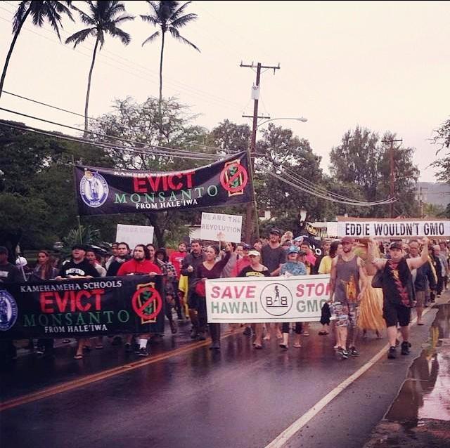 GMO-Free Oahu meeting