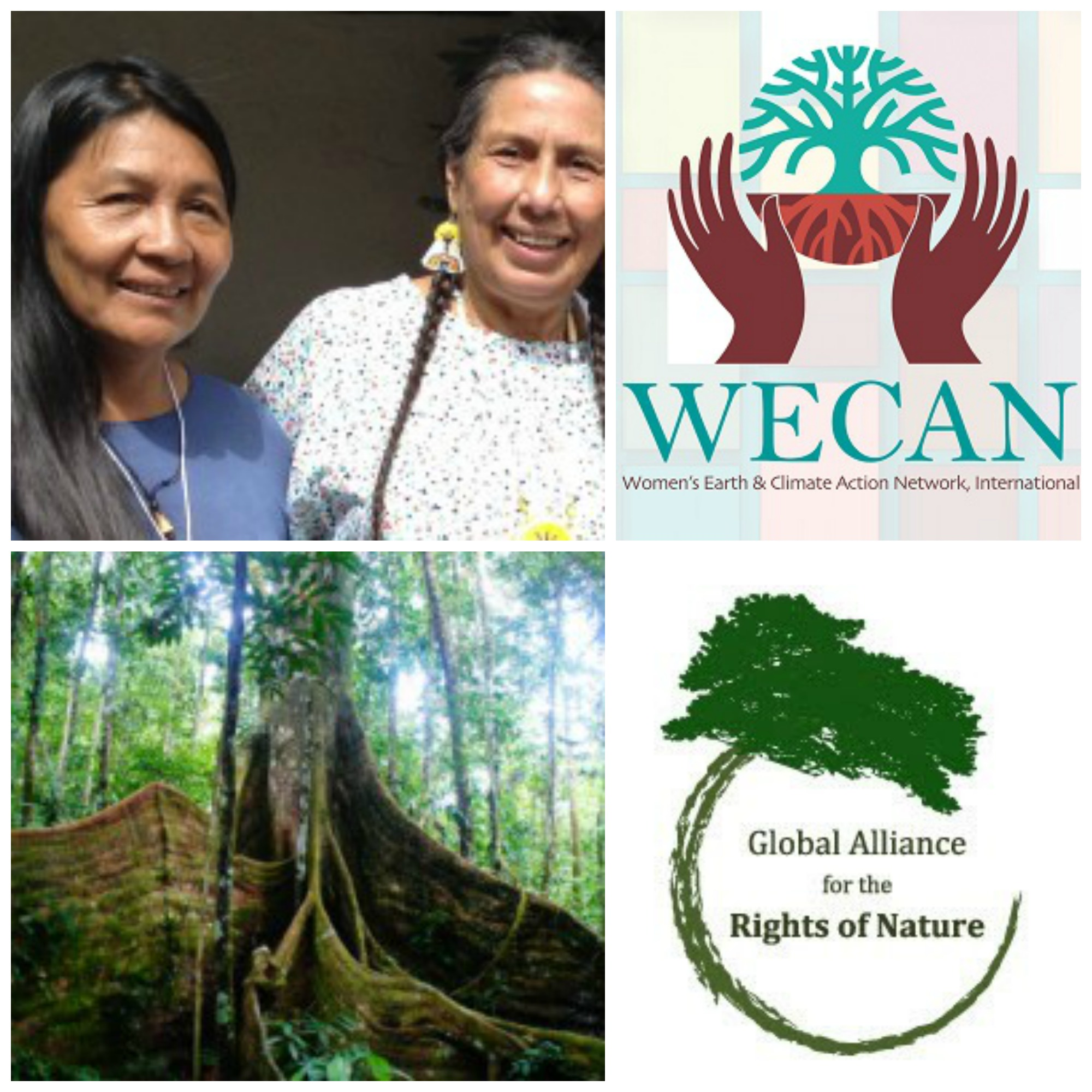 """""""Rights of Nature and Systemic Change in Climate Solutions""""  WECAN and Global Alliance For the Rights of Nature"""