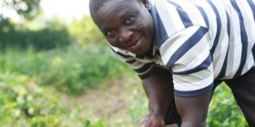 My story and my Navdanya inspired farm