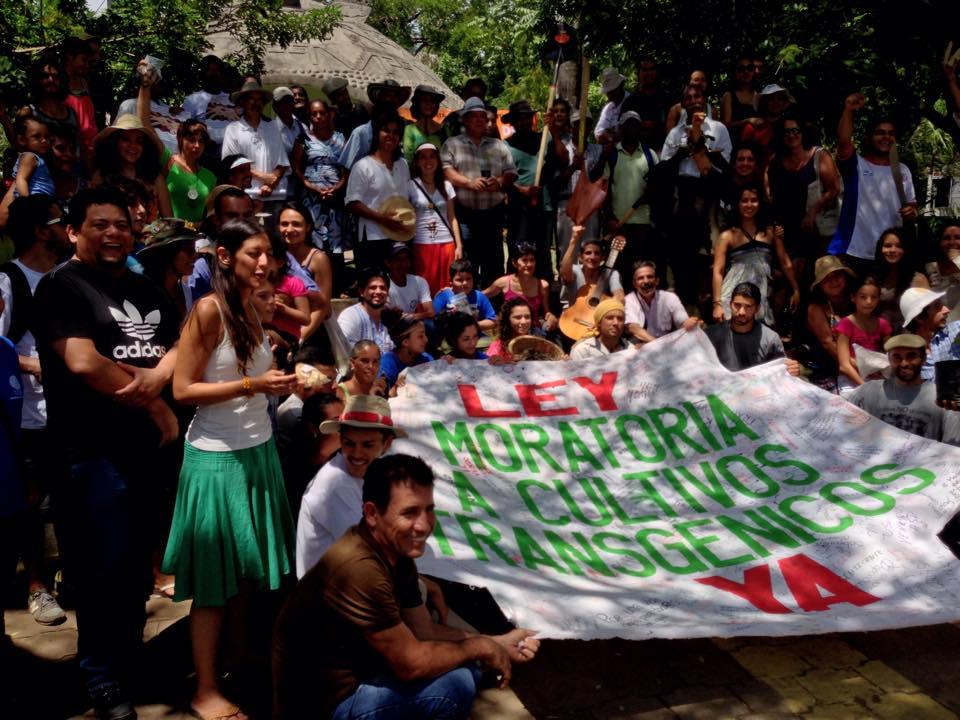 Alerta Transgénica Costa Rica