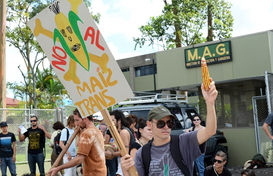 Environmental groups on several occasions have demonstrated against the production of GMOs in Costa Rica. Alberto Font/The Tico Times