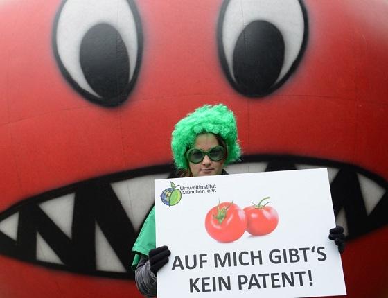 Photo source: http://www.umweltinstitut.org/aktuelle-meldungen/meldungen/protest-gegen-patente-auf-brokkoli-und-tomaten.html