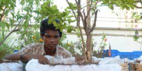 Mumbai Rooftop Garden