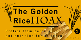 The Golden Rice Hoax