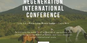 Regeneration International Conference