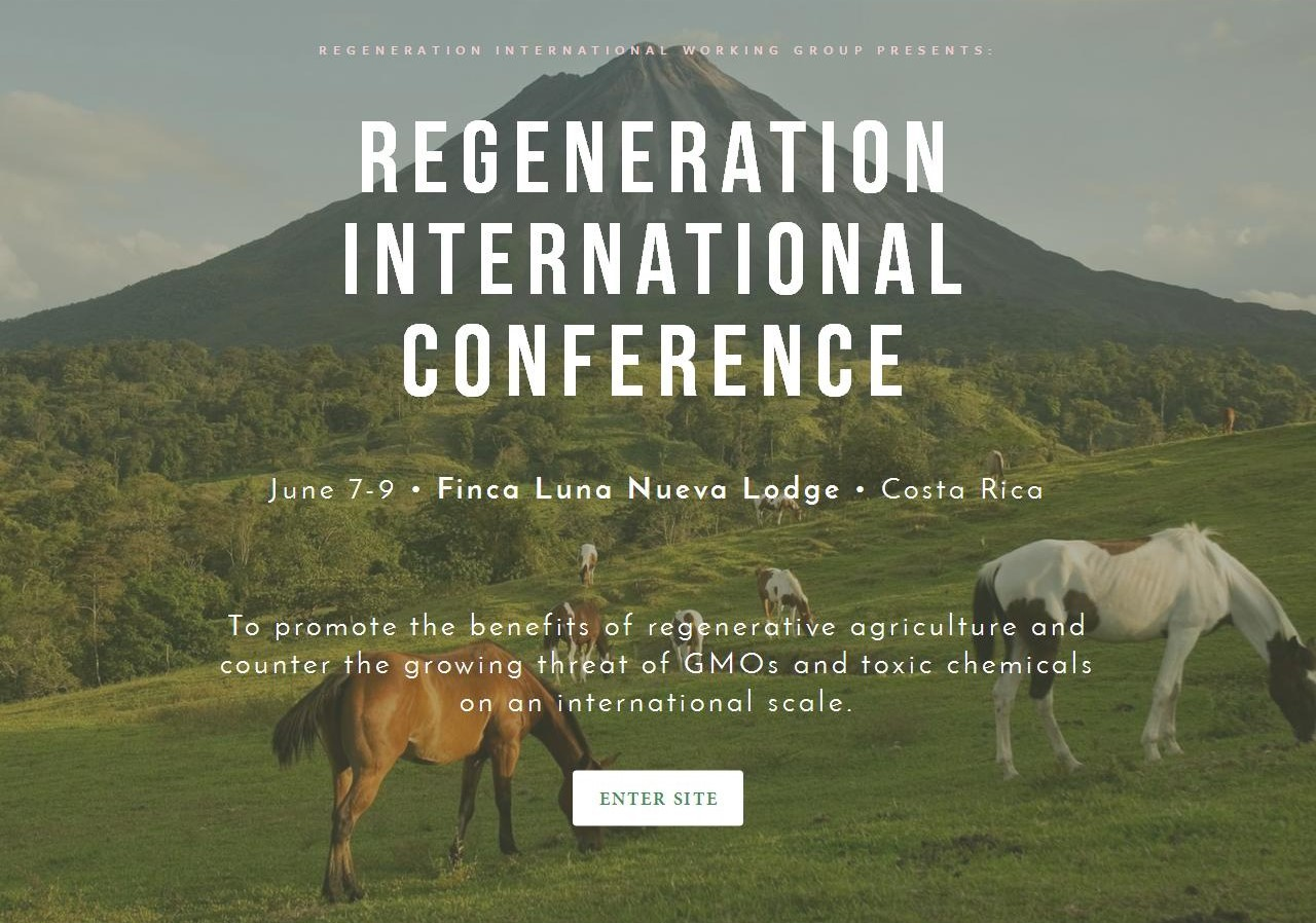 Regeneration International Conference