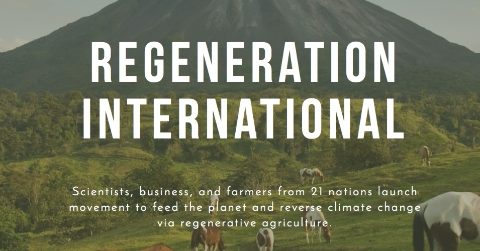 """It's time to move beyond 'too little, too late' mitigation and sustainability strategies,"" writes Cummins. ""It's time to inspire and mobilize a mighty global army of Regenerators, before it's too late."" (Image: Regeneration International)"