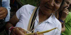 II Encuentro Nacional de la Red de Semillas Libres de Colombia
