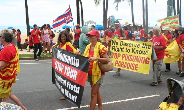 A march against pesticides in Hawaii. Photograph: Christopher Pala for the Guardian