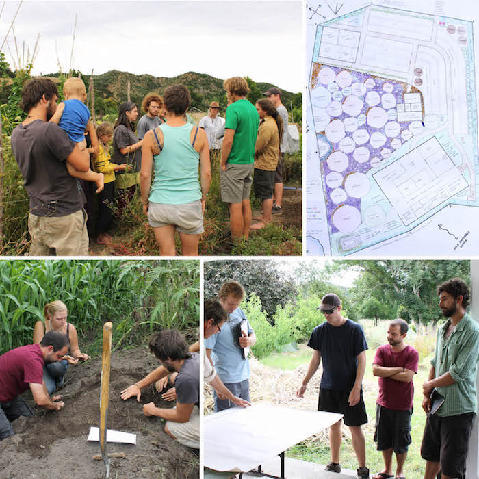 Permaculture Design Course
