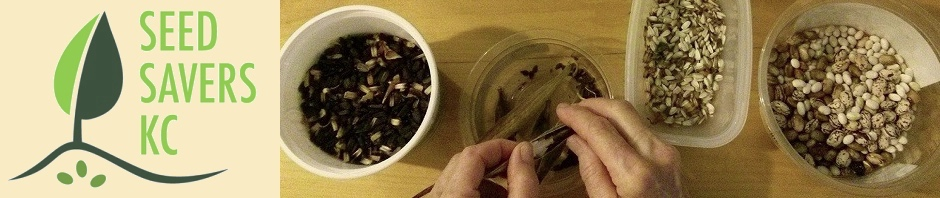 SeedSavers-KC Seed Saving 101 free classes