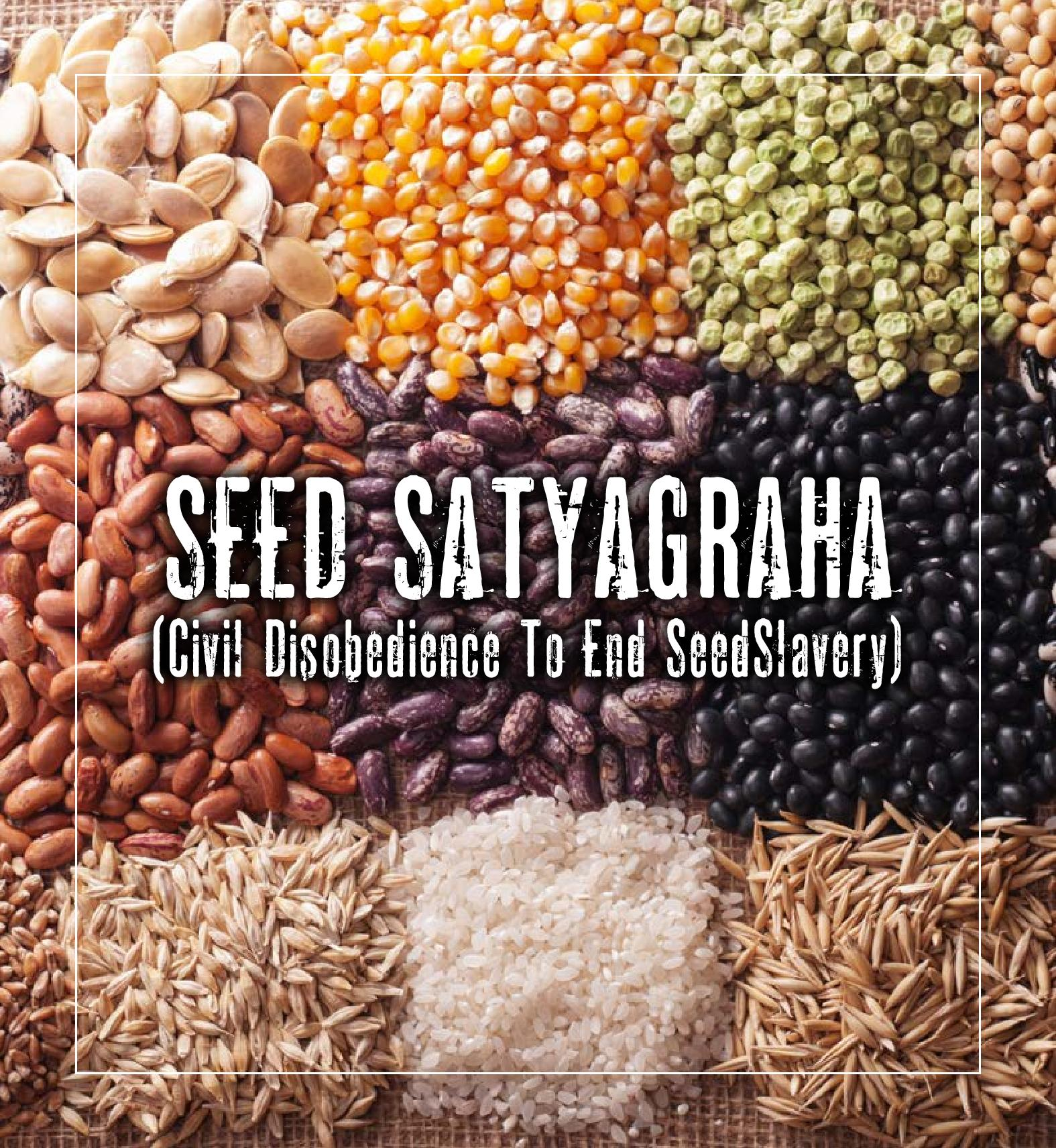 Seed Satyagraha Booklet 1-page-001
