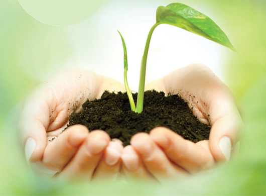 Why Soil matters?: A European perspective