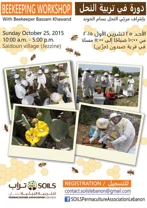 Introduction to Beekeeping Workshop
