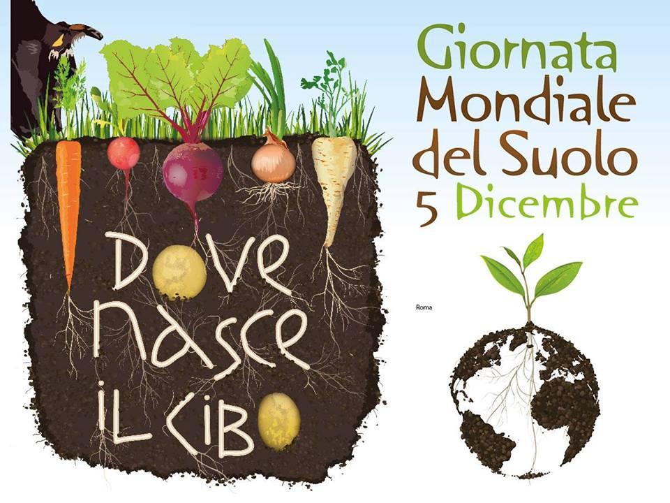 Soil Day - La vita sotto i nostri piedi