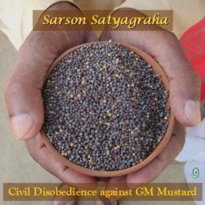 Sarson Satya FB