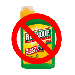 TAKE ACTION! Tell EPA's Neil Anderson: Ban Monsanto's Roundup Now!
