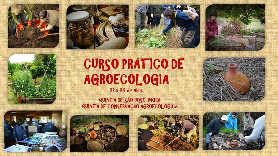 CURSO PRÁTICO DE AGROECOLOGIA