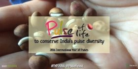 Navdanya 'Pulse of Life' Campaign Launch
