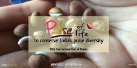 Navdanya 'Pulse of Life' Campaign Launch