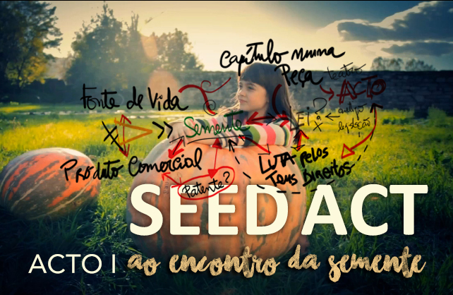 Estreia da primeira curta documental do SEED ACT