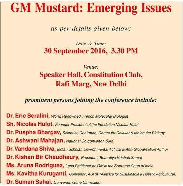 GM Mustard: Emerging Issues