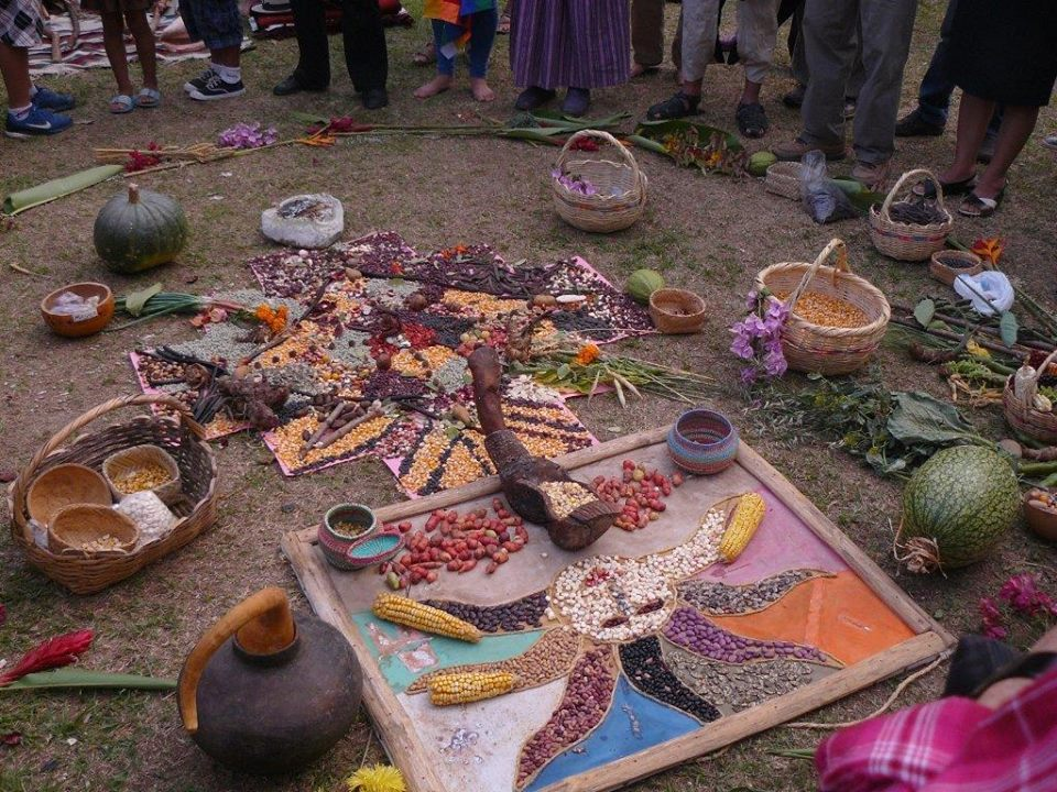 Seed Guardians join People's Assembly - Ecuador