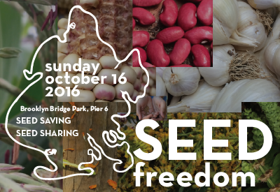 Brooklyn Seed Freedom
