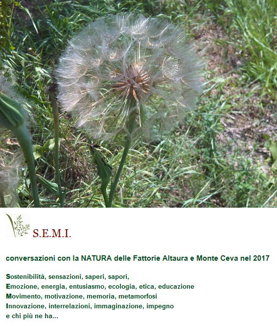 S.E.M.I. conversazioni con la NATURA / conversations on NATURE