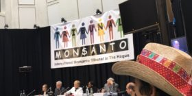 Livestream: International Monsanto Tribunal – Public Presentation of the Advisory Opinion