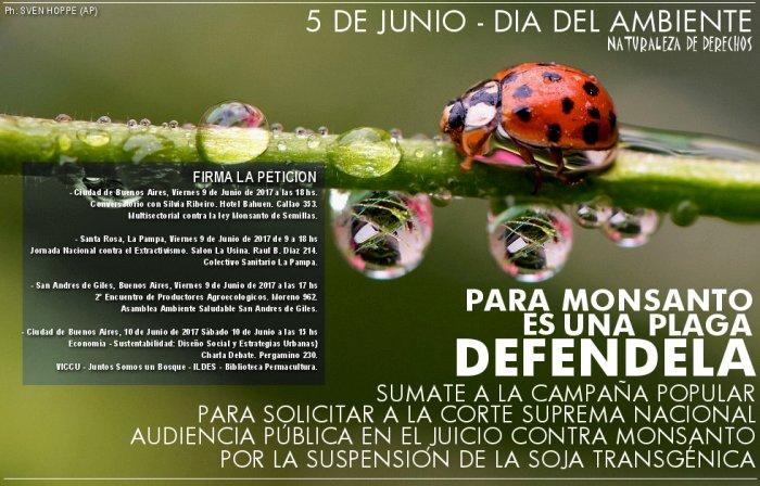Campaña Popular de Adhesion a la Solicitud de Audiencia Publica a la Corte Suprema Nacional Argentina por la Soja Transgénica de Monsanto.