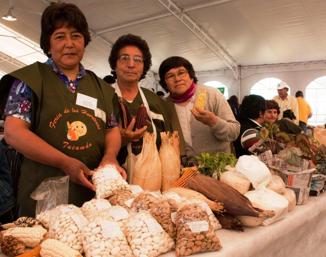 Semana Continental de la Semilla Nativa y Criolla y otros Intercambios de Semillas