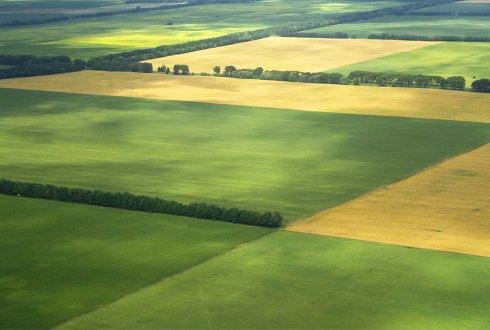 00bf1fcc-f5b7-4d9a-b9b5-1d0417bfeae8_shutterstock_11422558_landschap_landbouw_luchtfoto_velden_LR_497dac6f_490x330