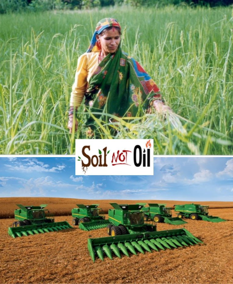 Soil not oil seed freedom for Soil not oil