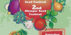 2nd Olympic Seed Freedom Festival in Greece
