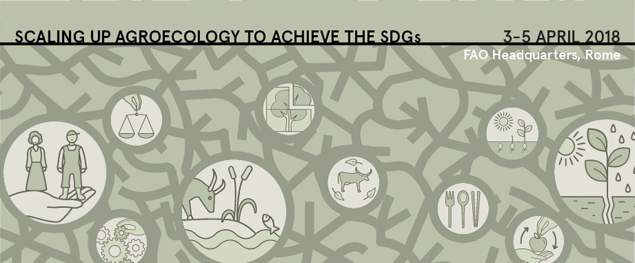 FAO 2nd International Symposium on Agroecology