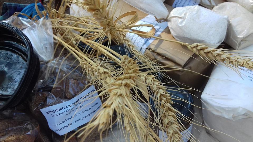 Εργαστήριο ψωμιού στο Πελίτι