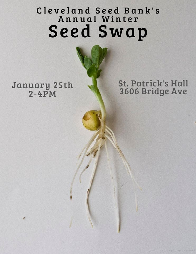 Annual Winter Seed Swap